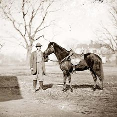 General U.S. Grant's horse, JEFF DAVIS. It was taken in 1865.