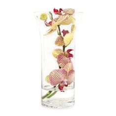 Midi Orchid In Glass available at www.woolworths.co.za Cut Flowers, Orchids, Mothers, Detail, Amazing, Glass, Drinkware, Lily, Orchid