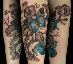 Butterflys and Flowers