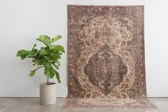 MELTEM 6x9 Hand Knotted Turkish Wool Rug by HomesteadSeattle