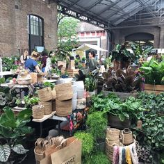 We are so excited to bring our jungly market back to Canopy Market, King's Cross London. Link for all the times and details Things To Do In London, All Things, London Market, Green Rooms, Food Festival, Plant Decor, Save The Date, House Plants, Canopy