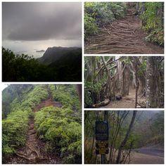 Kuli'ou'ou Valley Trail. Kalaau Pl, Oahu Hawaii