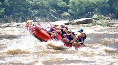 Looking for adventure in the #DC area? Look no further than our White Water Rafting