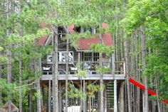 Check out this awesome listing on Airbnb: Treehouse Retreat for four ! in Durham