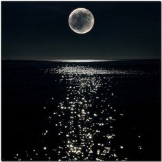 I Love The Moon .Wow Beautiful Full Moon shining high in the sky over the water, lighting up the night skies and shining, sparkling in the water. Moon Moon, Full Moon, Moon Sea, Moon River, Big Moon, Beautiful Moon, Beautiful World, Beautiful Things, Sun Moon