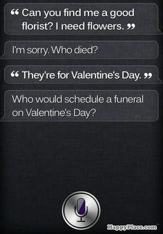 Siri...lol
