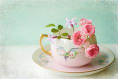 Tea Cup & Roses.