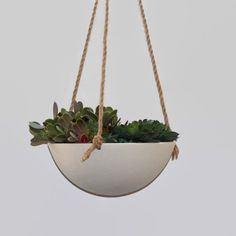 Large Porcelain Hanging Planter