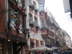 Strasbourg Christmas building decoration.  Polar Bears!!