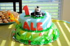 Cake from a Jungle Party #jungle #partycake