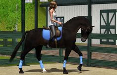 Sims 3 Horses Jumping   sims 3 dressage poses