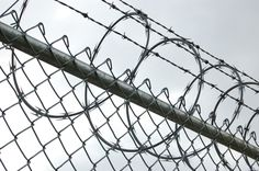 """Yeah, that's really welcoming and comforting."" Fox scoffed as he gestured his head towards the tightly curled barbed wire fencing. The man next to him smirked before a blunt force rammed itself into the soft part of Fox's stomach forcing him to his knees. Pain blossomed from the point of impact and caused him to lift his head and give a chilling smile coated in red."