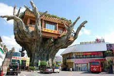 The Japanese tree restaurant Naha Harbor Diner, Okinawa Naha, Crazy Houses, Cool Tree Houses, Weird Houses, Amazing Houses, Dream Houses, Tree Restaurant, Chinese Restaurant, Greenhouse Restaurant