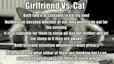 Funny pictures about Girlfriend Vs. The Cat. Oh, and cool pics about Girlfriend Vs. The Cat. Also, Girlfriend Vs. The Cat photos. Memes Humor, Logic Memes, Cat Memes, Best Funny Pictures, Funny Images, Funny Cats, Funny Jokes, Funny Girlfriend Memes, Funny Animals