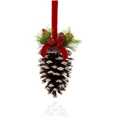 Large Snow Covered Pine Cone Christmas Decoration M&S (6.20 SGD) ❤ liked on Polyvore featuring home, home decor, holiday decorations, christmas, holiday, tubes, christmas holiday decorations, christmas home decor, holiday decor and holiday home decor