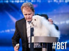 Britain& Got Talent 2015 semi-final Five acts to watch from dog . Britains Got Talent Best Magician, A Dogs Purpose, Britain's Got Talent, Family Feud, Simon Cowell, Semi Final, Old Dogs, Brie, Dog Pictures