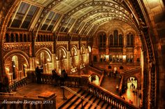 GB - London - Natural History Museum