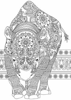 Colour Board Mammals Print Coloring Pages Colors