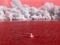 blood water- infrared