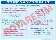 Despartirea cuvintelor in silabe Romanian Language, Grammar, Logos, School, Literatura, Logo