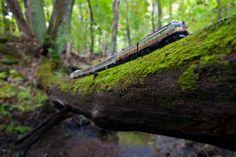 Джефф Фризен. Игрушечный поезд путешествует по Канаде. Красивые фотографии пейзажей