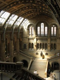 The cathedral-like Central Hall of London's Natural History Museum boasts a towering arched ceiling ribbed with exposed iron beams and adorned with hundreds of hand-painted tiles depicting plants and animals.