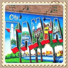 Top 3 places to live in tampa bay real estate for Best places to live in tampa