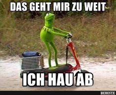 I don't know why the Kermit memes always make me laugh so hard. Funny Quotes, Funny Memes, Hilarious, Memes Humor, Jokes, Sapo Meme, Kermit The Frog, Funny Posts, Laugh Out Loud