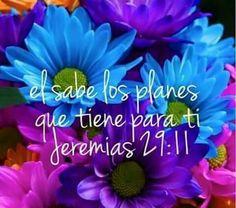Jeremías 29:11 Porque yo sé los pensamientos que tengo acerca de vosotros, dice Jehová, pensamientos de paz, y no de mal, para daros el fin que esperáis.♔
