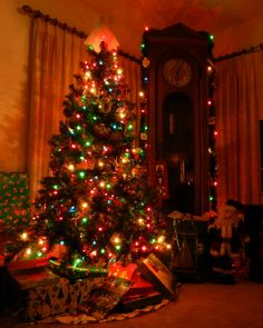 12 Best Christmas Tree Colored Lights Images Christmas Trees