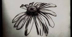 Wilted Daisy- pencil sketch by Tallis.deviantart.com on @deviantART ( GOOD TATTOO IDEA)