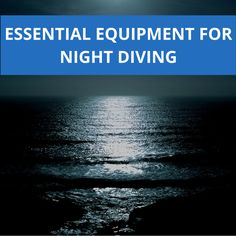 Check out our newest post about the essential equipment for night divers and get ready to enter the dark underwater world! Underwater World, Diving, The Darkest, Essentials, Night, Check, Blog, Scuba Diving, Blogging