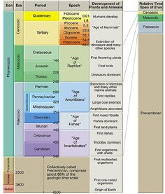 geologic time scale webquest - Google Search
