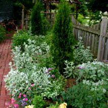 herb garden design Herb Garden Design What is an Herb Knot