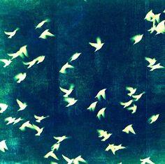 Retro Birds Art Print