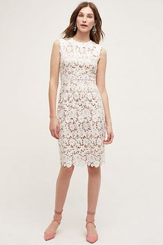 Lace Garden Pencil Dress #anthropologie