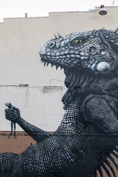 ROA #street art #graffiti. street art 000