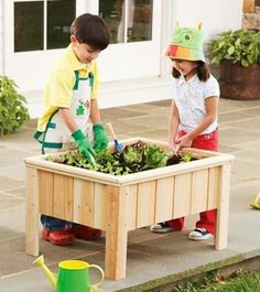 Raised children's garden......