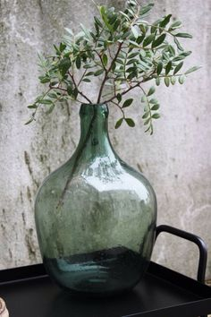 Antique Demijohns – How to Decorate with Them and Where to Find Them - Home Dekor Green Glass Bottles, Recycled Glass Bottles, Deco Floral, Light Crafts, Vintage Bottles, Antique Bottles, Bottle Vase, Vases Decor, Decorating With Vases