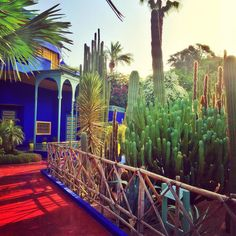 Yves Saint Laurent and Pierre Bergé's home in the Jardin Majorelle is at once striking and familiar. We expected its intense flash of Yves Klein blue, and an injection of optimistic color.