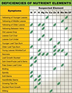 Handy plant nutrient deficiency diagnostic chart! For more information on plant tissue testing http://agsource.crinet.com/page465/PlantTissueAnalysis