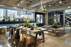 Today's Special,  in Japan As you make your way around the store, watch out for hanging terrariums – they are everywhere. Designer's  intentions were to create a jungle experience among trees and moss covered pots. Pots, saucers, shrubs, and trees dress the tables.