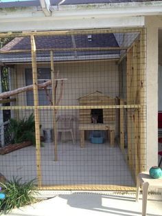 Catio = an outdoor cat enclosure inside a patio.