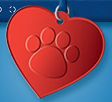 FREE Custom Engraved Pet Tag from Purina on http://hunt4freebies.com