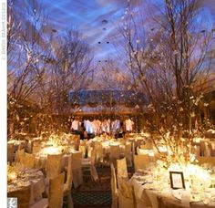 reception lighting & a forest of branches