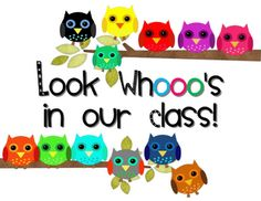 Owl printables and other ways to decorate with owls