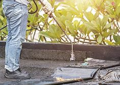 When it comes time to replace or repair the roof on your business, hiring a professional commercial roofing company is your best option. Roofing Companies, Roofing Systems, Commercial Roofing, Weather And Climate, Roofing Contractors, Roof Repair, Water Damage, Things To Come, Business