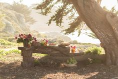 Need some outdoor wedding inspiration. Let us help you get creative! Weddings | Big Sur | Monterey | Carmel | A Taste of Elegance Catering and Events