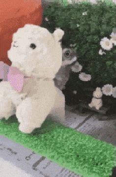 Whoo are yoo? https://plus.google.com/115485979219209097599/posts/aw99avAYRUZ