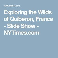 Exploring the Wilds of Quiberon, France - Slide Show - NYTimes.com